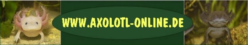 Axolotl online